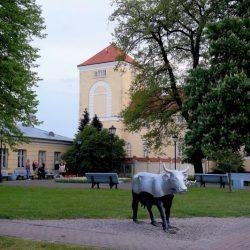 Muzeju nakts Livonijas ordeņa pilī 2019