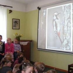 Putnu dienas H. Dorbes muzejā