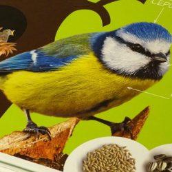 Putnu spartakiāde