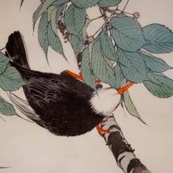 Sakuras un putni
