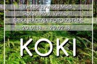 Afiša_Koki_uzskatei